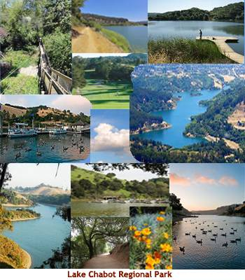Pictres of Lake Chabot Regional Park
